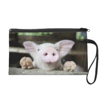 Baby Pig in Pen, Piglet Wristlet Clutches