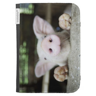 Baby Pig in Pen, Piglet Kindle 3 Case