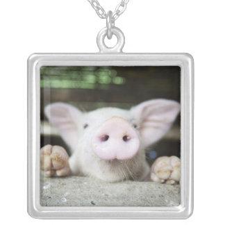 Baby Pig in Pen, Piglet Custom Necklace