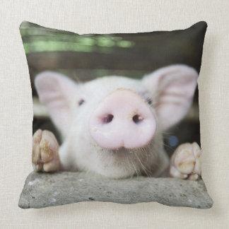 Baby Pig in Pen, Piglet Throw Pillow