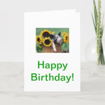 Baby Piglet Pig Card