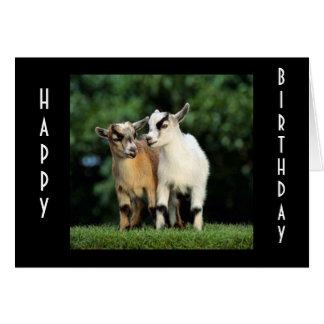 "BABY PIGMY'S SAY ""HAPPY BIRTHDAY"" CARD"