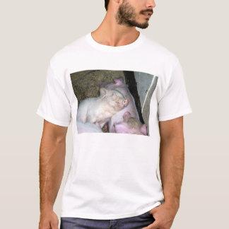 Baby pigs  T-Shirt