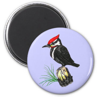 Baby Pileated Woodpecker Magnet