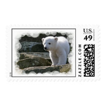 Baby Polar Bear Postage Stamp