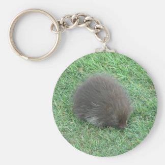 Baby Porcupine Basic Round Button Keychain