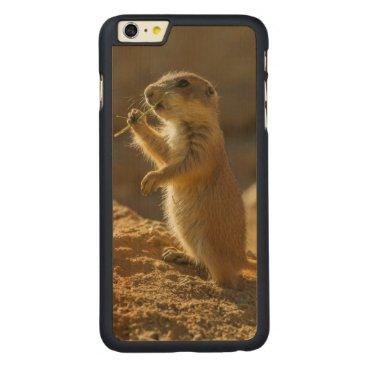 USA Themed Baby prairie dog eating, Arizona Carved Maple iPhone 6 Plus Case