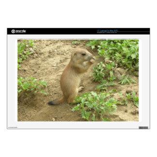 "Baby Prairie Dog Skins For 17"" Laptops"