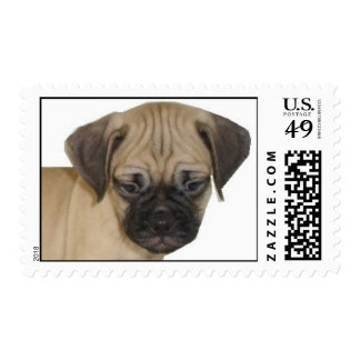 Baby Puggle Stamps
