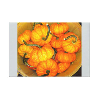 Baby Pumpkin Basket Canvas Print