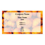 Baby Pumpkins Double-Sided Standard Business Cards (Pack Of 100)