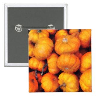 Baby Pumpkins Pinback Buttons