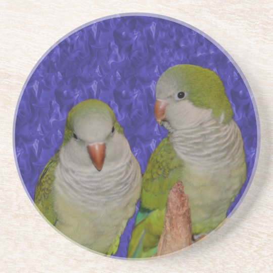Baby Quaker Parrots Animal Coaster