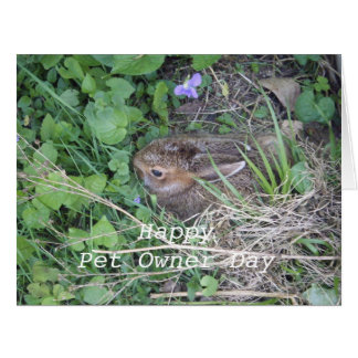 Baby Rabbit-Celebrating Pet Owner's Day Card