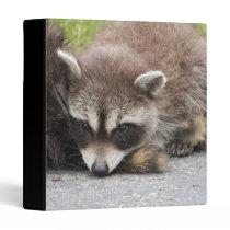 Baby Raccoon Binder