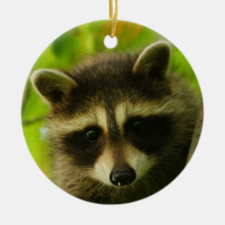 baby raccoon ceramic ornament