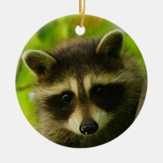 baby raccoon ceramic ornament