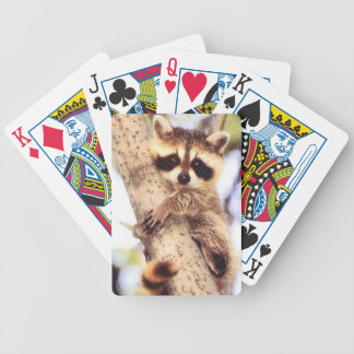 Baby Raccoon Playing Cards