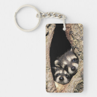 Baby raccoons in tree cavity Procyon Double-Sided Rectangular Acrylic Keychain