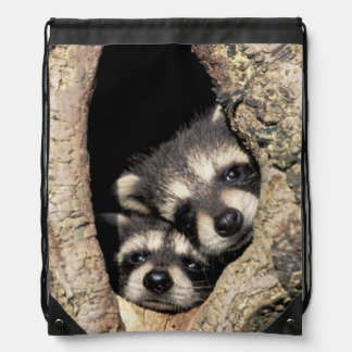 Baby raccoons in tree cavity Procyon Drawstring Backpack