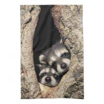 Baby raccoons in tree cavity Procyon Kitchen Towel
