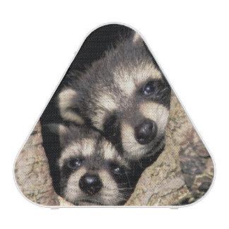 Baby raccoons in tree cavity Procyon Bluetooth Speaker