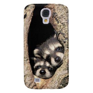 Baby raccoons in tree cavity Procyon Samsung Galaxy S4 Case