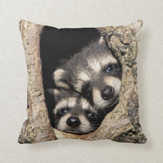 Baby raccoons in tree cavity Procyon Throw Pillow