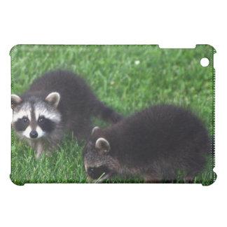 Baby Raccoons iPad Case
