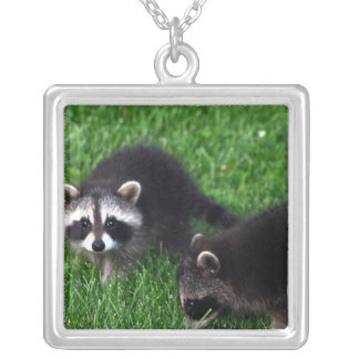 Baby Raccoons  Necklace