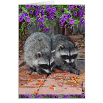 Baby Raccoons With Purple Flowers