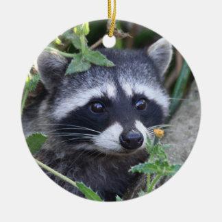 Baby Racoon Christmas Tree Ornament
