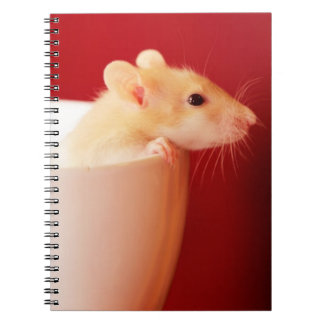 Baby rat in teacup. notebook