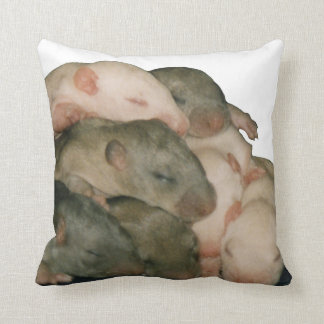 baby rat pile pillow