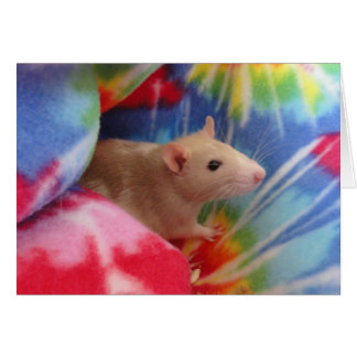 Baby Rat Stationery Note Card