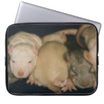 baby rats Laptop Sleeve