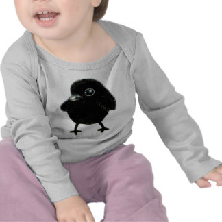 Baby raven t-shirts