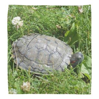 Baby Red Eared Slider Turtle Bandana