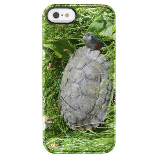 Baby Red Eared Slider Turtle Uncommon Clearly™ Deflector iPhone 5 Case