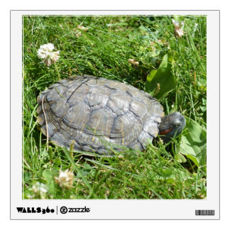 Baby Red Eared Slider Turtle Wall Decal