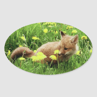 Baby Red Fox in Green Field With Yellow Flowers Oval Sticker