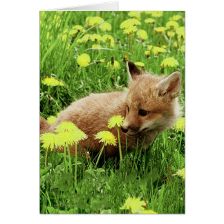 Baby Red Fox in Green Field With Yellow Flowers Stationery Note Card