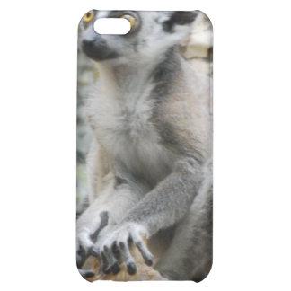 Baby Ringtailed Lemur iPhone 4 Case