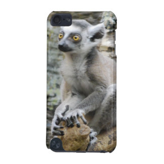 Baby Ringtailed Lemur iTouch Case iPod Touch 5G Cover
