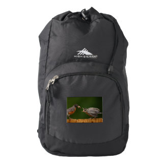 Baby Robin Backpack