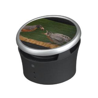 Baby Robin Bluetooth Speaker