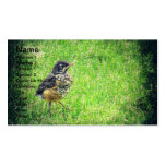 Baby Robin Business Cards