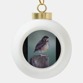 baby robin ceramic ball christmas ornament