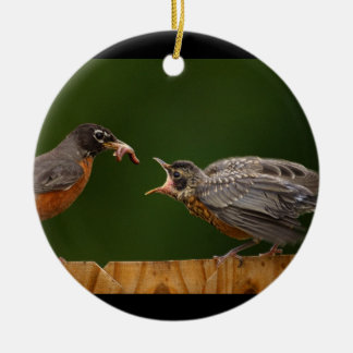 baby robin is hungry ceramic ornament