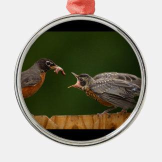 baby robin is hungry metal ornament